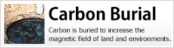 Carbon is buried to increase the magnetic field of land and environments. We provide charcoal that has been carbonized under high temperatures for use in carbon burial.